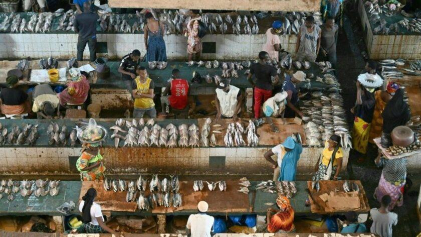 marché poisson abidjan